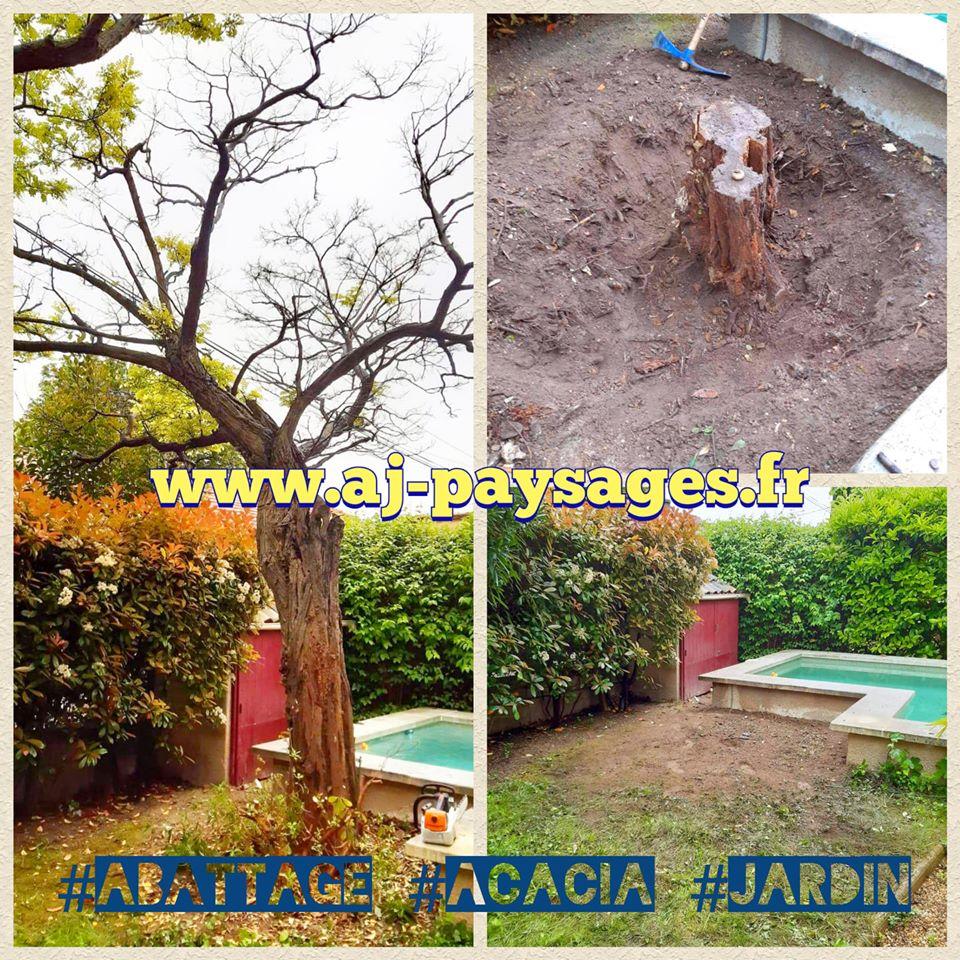 abattage acacias
